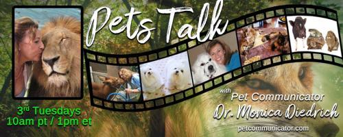 The Pet Communicator Show with Dr. Monica Diedrich: Why is it important to know what your animals are thinking, feeling, and to understand their change in behaviors?